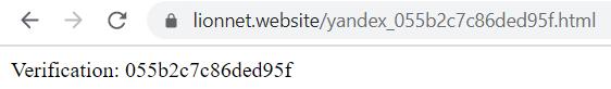 Для проверки в адресной строке браузера вводим путь к файлу на сайте (после домена lionnet.website/ прописываем имя файла). Файл на месте.