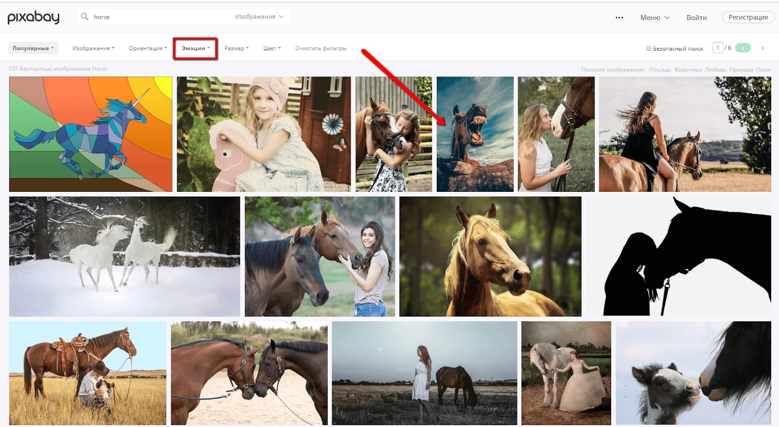 Очень приличная подборка снимков по запросу «лошадь» в категории «Эмоции». Теперь понятно, откуда появилось выражение «ржать, как лошадь» :)