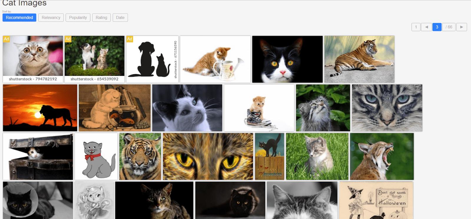 Пример выдачи по запросу «кот»