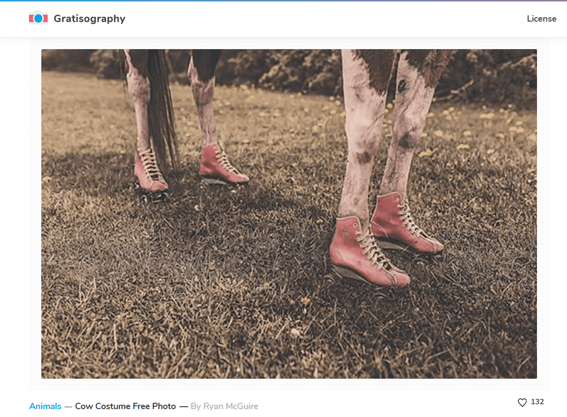 Отличное фото для рекламы обуви :)