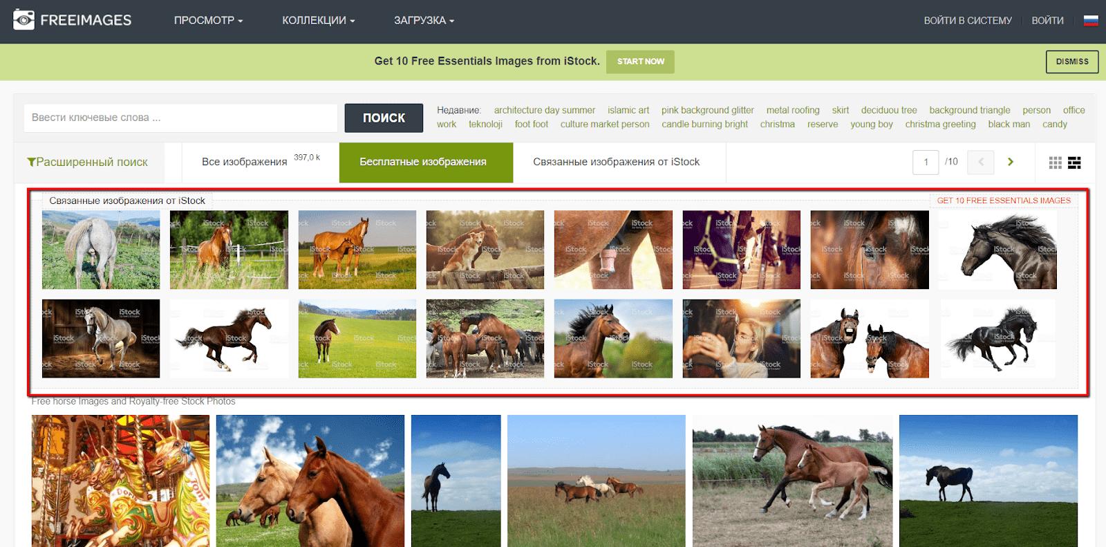 Обратите внимание, что верхние строчки выдачи занимают платные фотографии с iStock