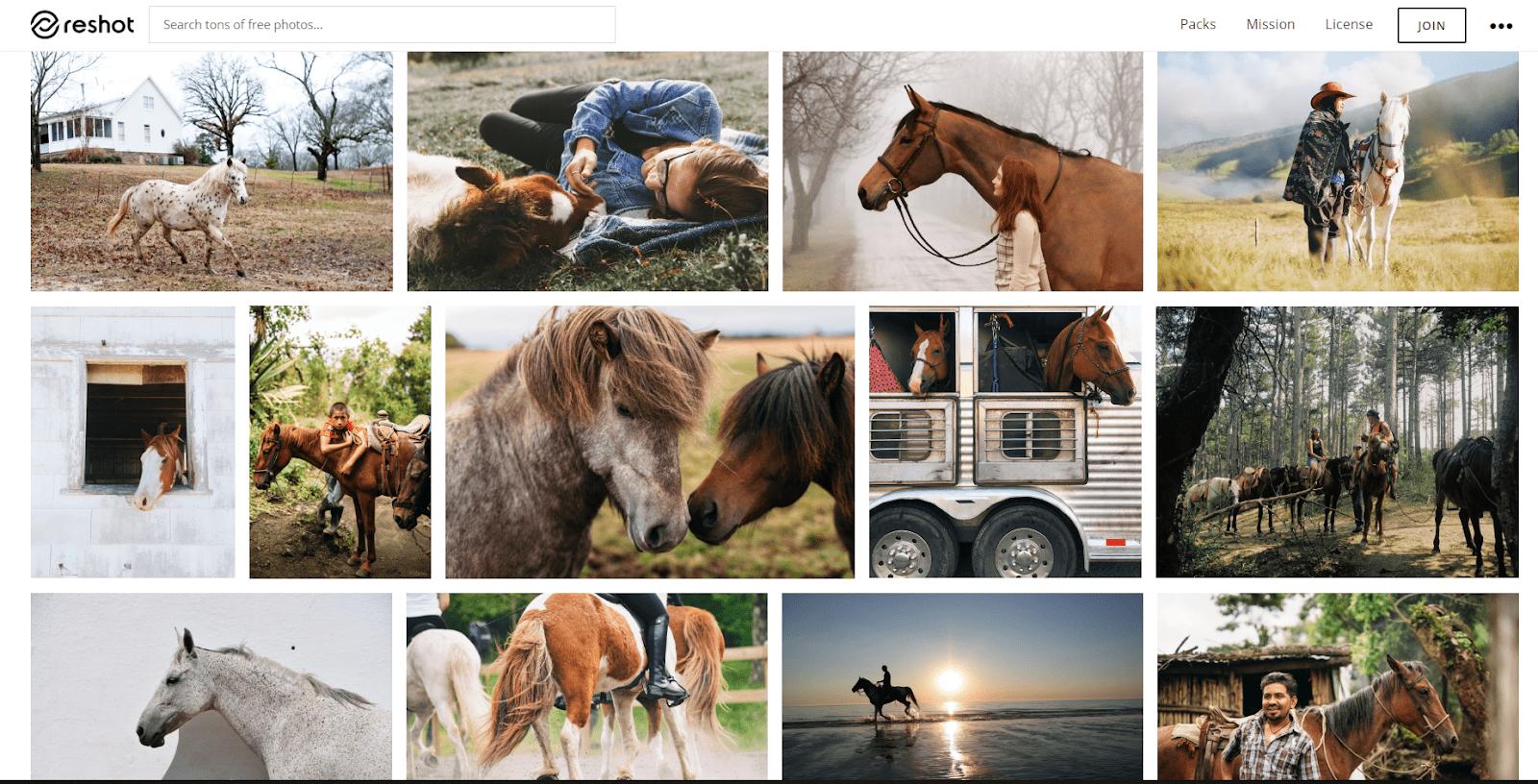 Фотографии по запросу «лошадь». Красиво, неизбито, атмосферно