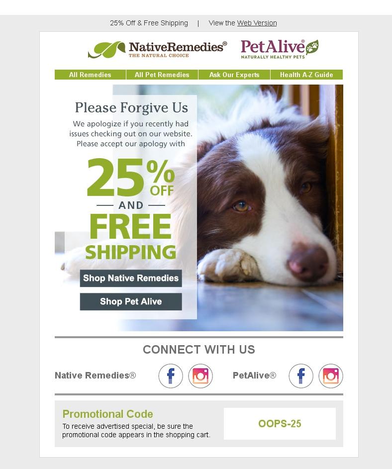 Письмо с извинениями о некорректной работе сайта и промокодом на скидку в магазине PetAlive