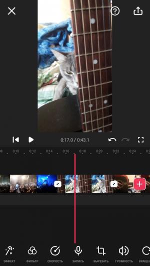 пример работы с видео.