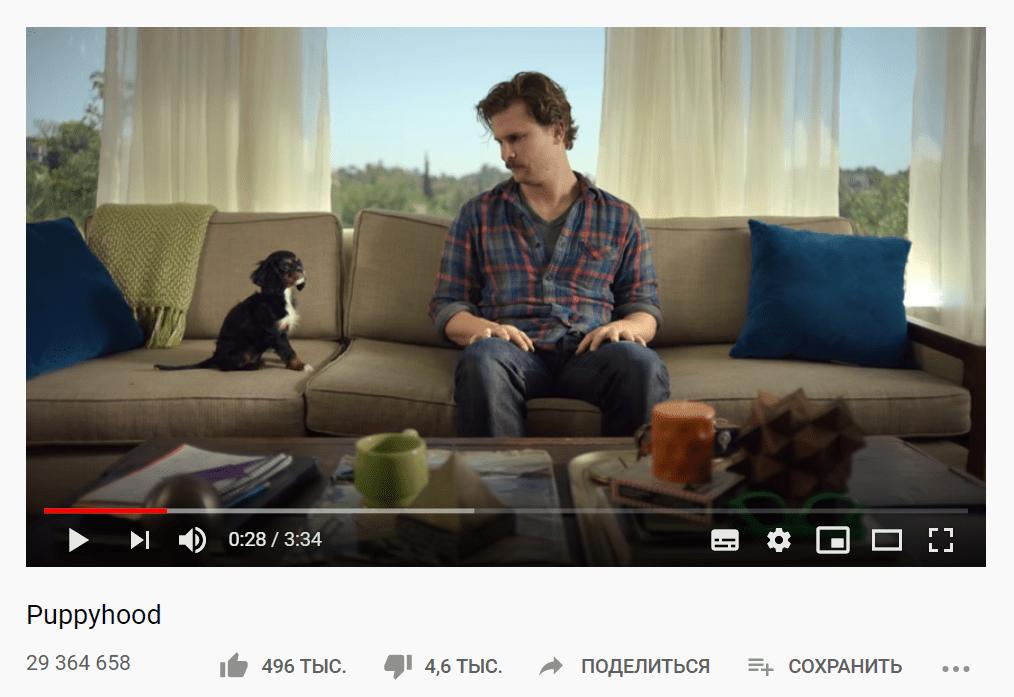 Видео Puppyhood