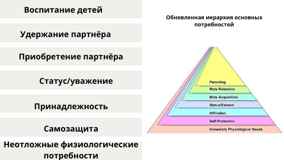 Обновлённая пирамида потребностей