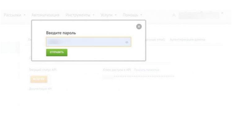 Ввод пароля для доступа к API-ключу.